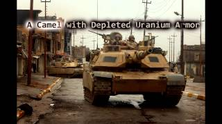 Royalty FreeSuspense:A Camel With Deplete Uranium