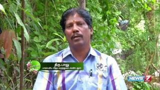 Poovali 24-06-2016 Nilapanai kilangu ( Curculigo orchioides) increases production of testosterone – NEWS 7 TAMIL Show