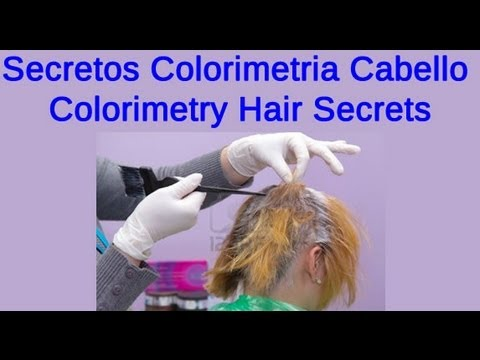 Secretos Colorimetria Cabello - Colorimetry Hair Secrets