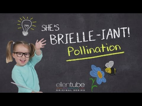 She's Brielle-iant, Pollination Bees and Honey!