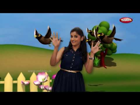 Marathi Rhymes For Children With Actions   Nonstop Bird Rhymes   मराठी बालगीत   Action Songs Kids