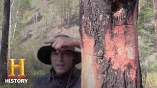 Alone: Bonus - Survival Hack: Felling a Tree (Season 5)   History - HISTORYCHANNEL