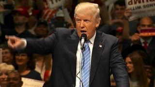 Donald Trump makes quip about not hurting protester - CNN