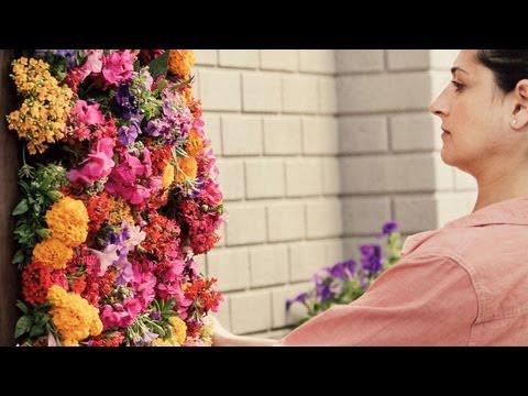 C mo hacer un jard n vertical vidoemo emotional - Como adornar un jardin ...