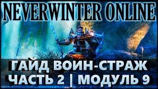 NEVERWINTER ONLINE - Воин-страж гайд: дары, спутники, экипировка