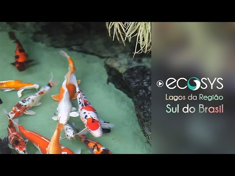 Ecosys Sul.