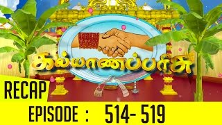 Kalyana Parisu Episode 514 to 519 Recap of This Week's Episodes – Sun TV Serial