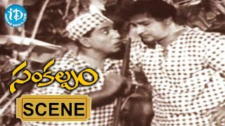 Sankalpam Movie - Tappudu Panulu  Video Song || NTR || Relangi || Ramana Reddy || Nageshwar Rao - IDREAMMOVIES