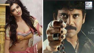 Nagarjuna's 'Raju Gari Gadhi 2' OFFICIAL POSTER Out | Samantha Prabhu - LEHRENTELUGU