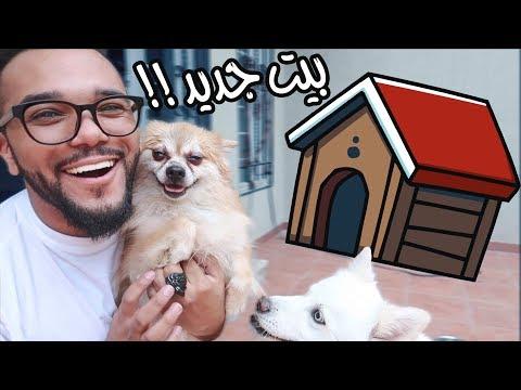 سويت بيت لكلبتي الجديدة🏚 !!