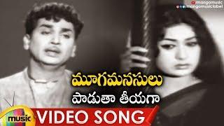 Paadutha Teeyaga Full Video Song | Mooga Manasulu Movie Songs | ANR | Savithri | Jamuna | Ghantasala - MANGOMUSIC