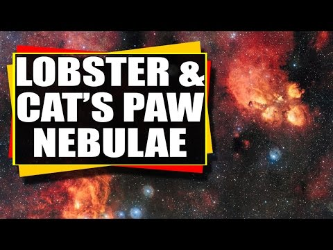 Astronomy Video: Looking At The Lobster and Cat's Paw Nebulae - The Wonders Of Space