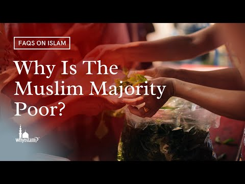 why arabs are backward She says islam's backward the guardian view columnists i ask if she understands why muslims going about their business are.