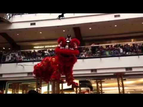 Barongsai di PIM 2 (Feb 2014)