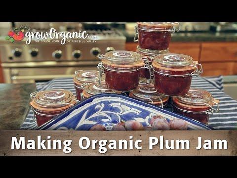 Making Organic Plum Jam