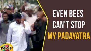 Even Bees Can't Stop My Padayatra says YS Jagan | Praja Sankalpa Yatra | Mango News - MANGONEWS
