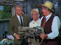 Green Acres: Mr. Haney's Airplane Service