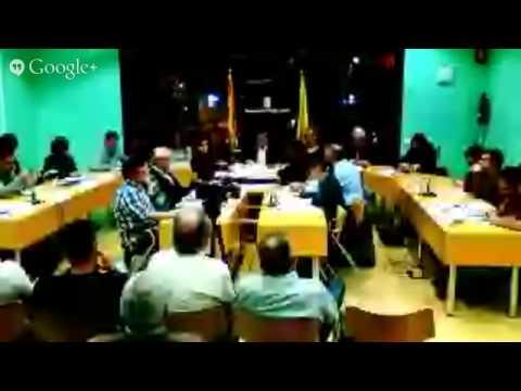 Ple Municipal Ordenances 2015