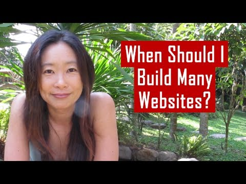 When Does It Make Sense to Build Many Websites To Support My Business?