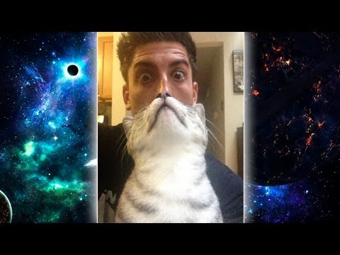 EPIC CAT BEARD