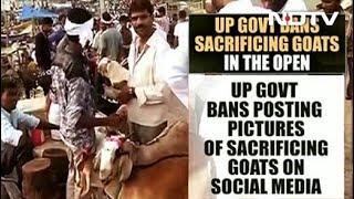 """No Sacrifice Selfies Please"": Yogi Adityanath's Direction For Bakrid - NDTV"