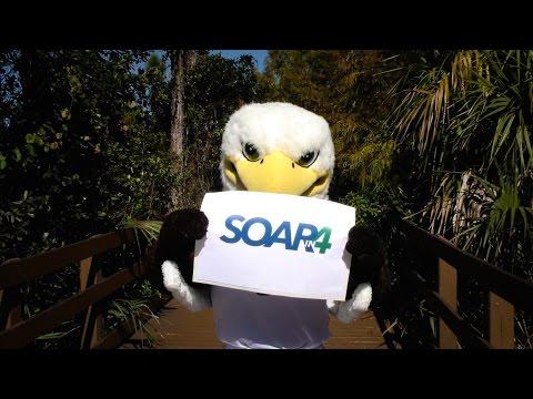 What is Soar in 4?