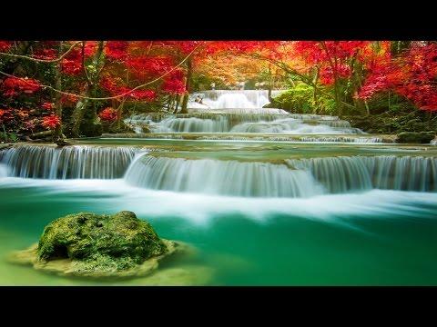 Healing Music, Meditation Music Relax Mind Body, Relaxing Music, Slow Music, ☯3174