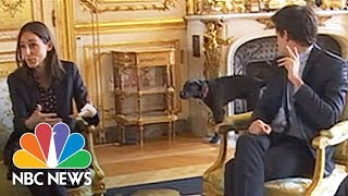 French President Emmanuel Macron's Meeting Interrupted By A Dog Taking A Leak | NBC News - NBCNEWS