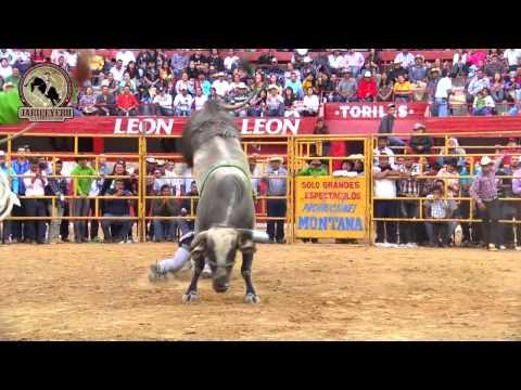 **20 BARBAROS** Rancho La Mision En La Monumental de Morelia Michoacan 16 Marzo 2014