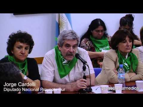 Diputado Jorge Cardelli en la audiencia pública por el aborto legal, seguro y gratuito
