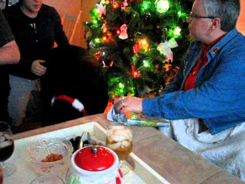 Holiday 2011: Dog Christmas Gifts