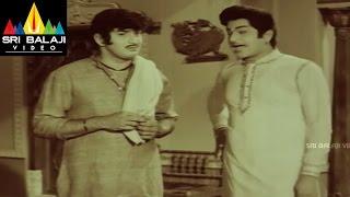 Mallamma katha Movie Krishna Introduction Scene || Krishna, Sharada, Sridevi - SRIBALAJIMOVIES