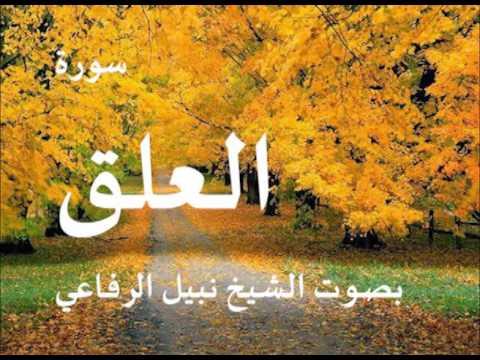 سورة العلق بصوت نبيل الرفاعي