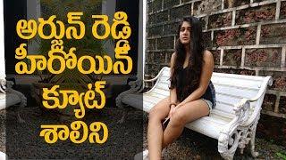 ARJUN REDDY heroine SHALINI PANDEY super cute || #ArjunReddy || #ShaliniPandey || Indiaglitz Telugu - IGTELUGU