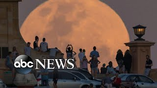 What is a super wolf blood moon? - ABCNEWS