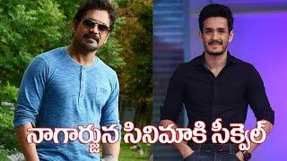 Akhil in Nagarjuna super hit movie sequel | Akhil Second movie - IGTELUGU
