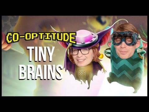 Tiny Brains Let