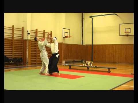 Iwama aikido demo Prague Praha
