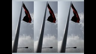 Tallest party flag post installed by DMK at Chennai head office - TIMESOFINDIACHANNEL