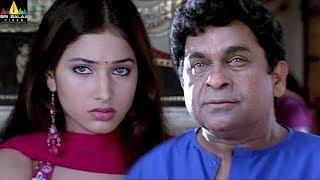 Tamanna's Sree Movie Comedy Scenes Back to Back | Brahmanadam, Sunil, Manoj | Sri Balaji Video - SRIBALAJIMOVIES