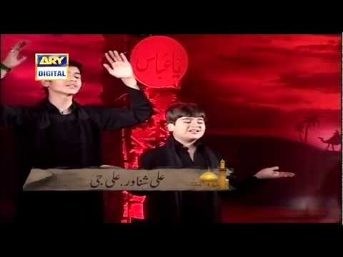Ali Shanawar & Ali Jee Channel Rec - Akbar Mera Pyara Tha (ARY)