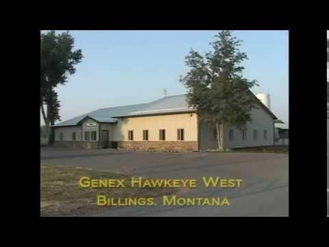 Genex Hawkeye West Custom Collection