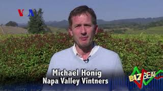 the wine is flowing - VOAVIDEO