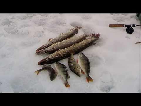 рыбалка щуки в марте на балансир