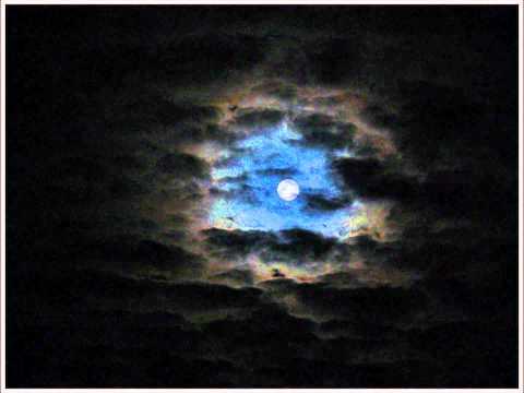 Halit Ergenç Sensiz Gece