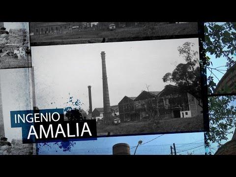 A 50 años del cierre de los ingenios: Amalia