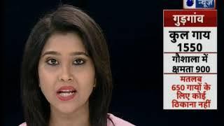 'ऑपरेशन गौशाला': ग्रामीण भारत के सबसे बडे संकट पर इंडिया न्यूज़ की पड़ताल - ITVNEWSINDIA