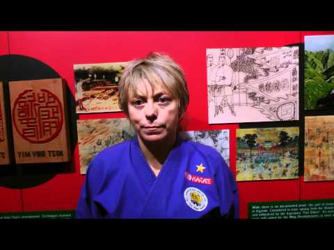 HKB Wing Chun[Black Flag Wing Chun] Testimony from USA, North America #91