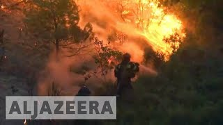 Homes damaged and hundreds flee as Greece wildfires spread - ALJAZEERAENGLISH