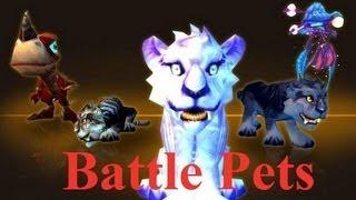 Mists of Pandaria Beta: PET BATTLES!